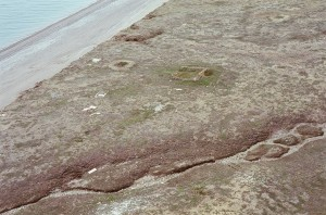 Aerial view of Mary Sachs site: Square remnant foundation was the CAE headquarters house, about 20 metres squared. Circular mark in front of it may have been an ice house. Rectangular foundation before that, near coast line, may have been another outbuilding. Note erosion on cliff to left side of photo.